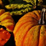 pumpkins-1708769_1920
